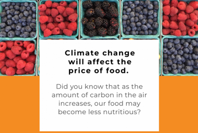 What About Food and Climate Change?